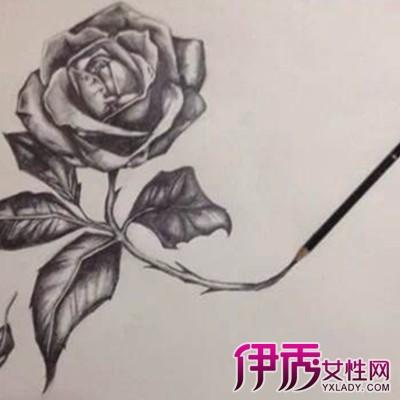 玫瑰花素描_玫瑰花纹身图片_玫瑰花素材_一支玫瑰