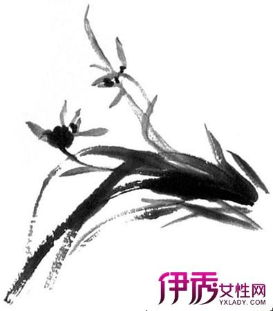 简单兰花水墨画画法介绍 墨色上要有浓淡层次变化