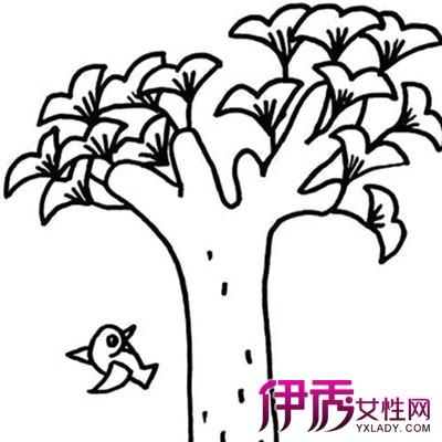 【图】展示简笔画银杏树的图片 简笔画的绘画方法你了解吗