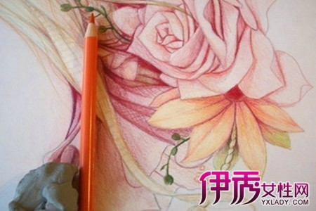 【简单铅笔素描花】【图】彩色铅笔画