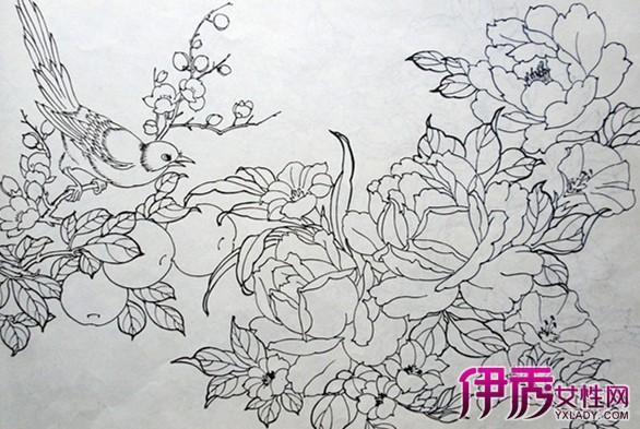 工笔画牡丹白描欣赏