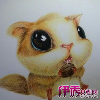 【可爱手绘松鼠】【图】可爱手绘松鼠图片欣赏