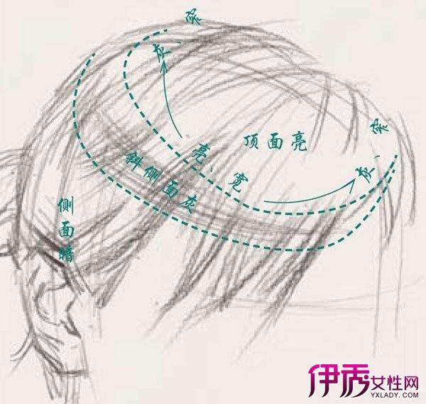 【头发素描画法】【图】头发素描画法