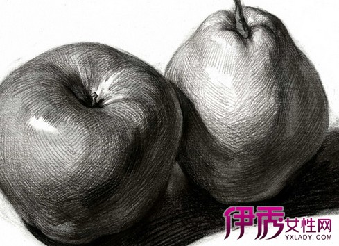 【图】 静物水果素描图片介绍 教你静物素描小技巧