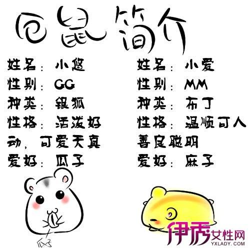 【图】简笔画仓鼠简单易学