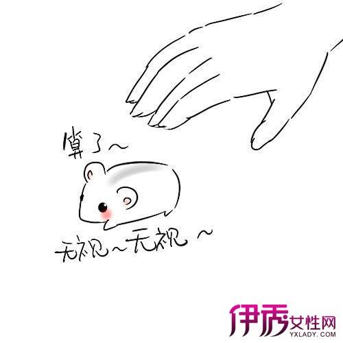 简笔画仓鼠简单易学 三个步骤教你快速学会简笔画