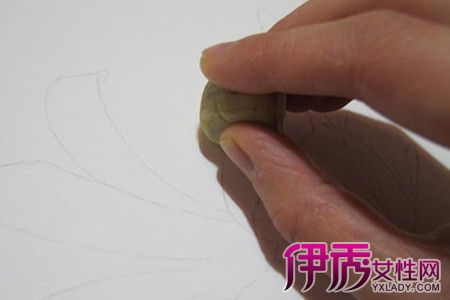 【图】简单彩铅手绘花朵画