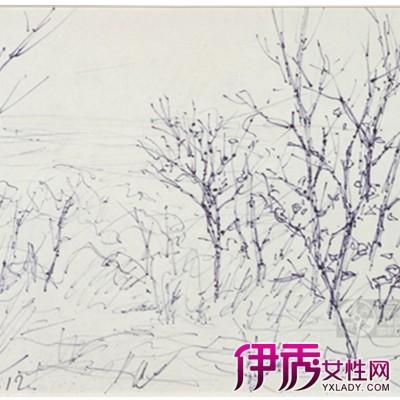 【图】素描树图片欣赏 盘点素描的技法种类