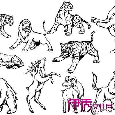 【图】素描动物图片大全展示 艺术零起步教你怎样画画