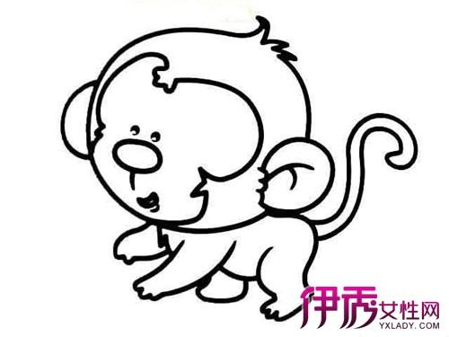 【猴子简笔画】【图】欣赏可爱的猴子简笔画图片