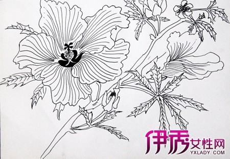 1,如搞图案设计和画工笔画的,侧重对花卉生长结构的描绘交待;2,而对于