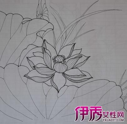 【图】花的简笔画图片大全素描 如何快速学习简笔画-喇叭花的简笔画图片
