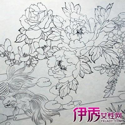 手绘牡丹 花朵素描图片-手绘牡丹图片铅笔画
