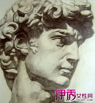 大卫石膏像素描图片大全 一种独具风格的单一绘画图片