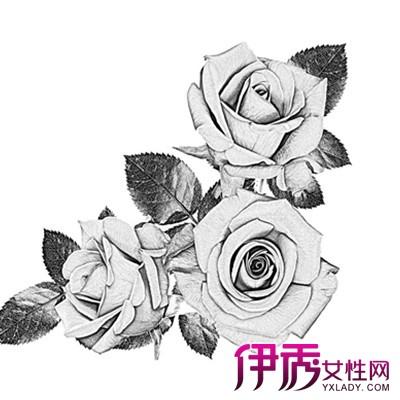 【图】玫瑰花素描画欣赏 最基本的素描工具有哪些