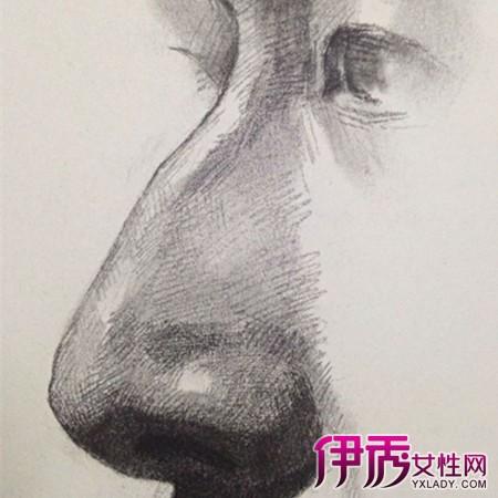 【图】鼻子素描图片步骤图大全-动漫黑白素描图片大全可爱最新版图片