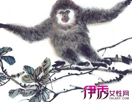 【猴子水墨画】【图】欣赏猴子水墨画图片