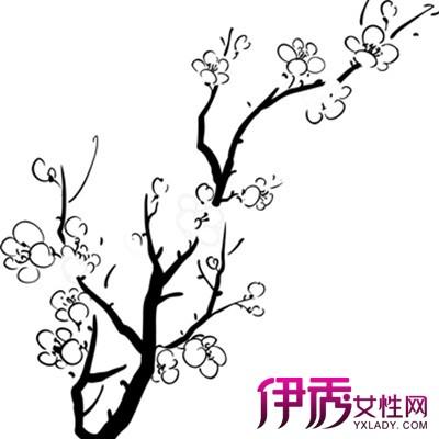 手绘樱花树图片简笔画 樱花树简笔画