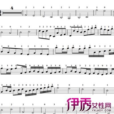 卡农小提琴独奏谱