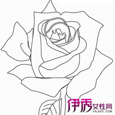 【图】素描玫瑰花的画法技巧