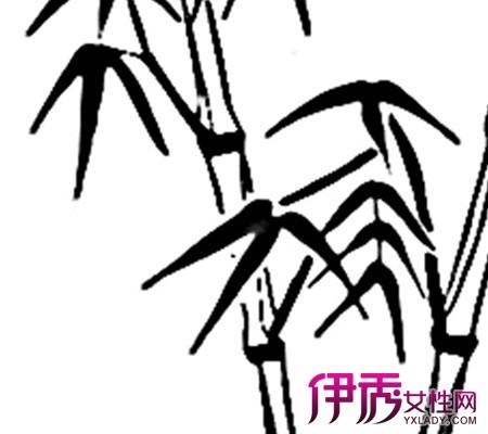 【手绘竹子简笔画】【图】手绘竹子简笔画欣赏