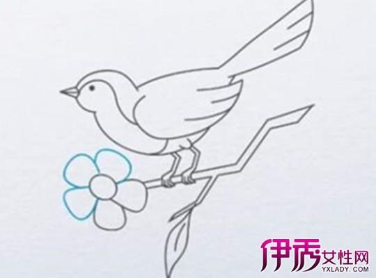 美术简笔画翅膀 步骤
