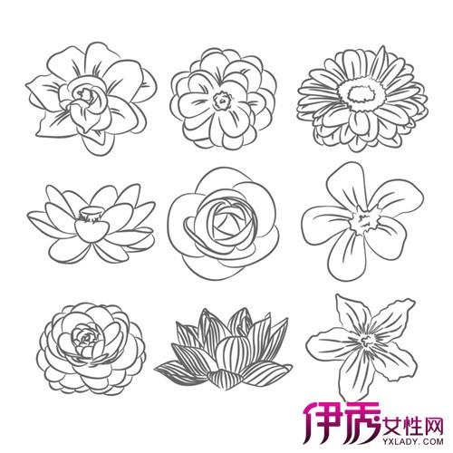 【图】花的素描怎么画 几点方法教你简单素描
