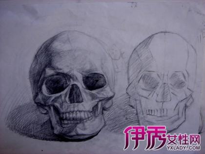 【骷髅头素描】【图】骷髅头素描图片展示