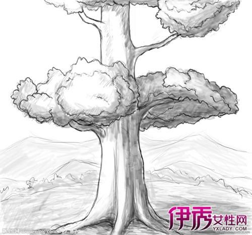 【图】黑白图画大全素描画 深入了解其的特点