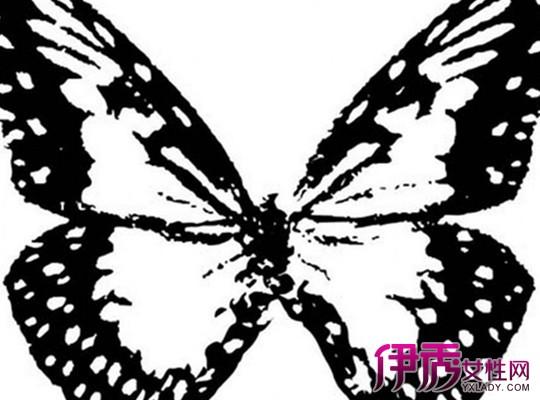 【图】黑白手绘蝴蝶图片大全 图解如何画出好看的蝴蝶