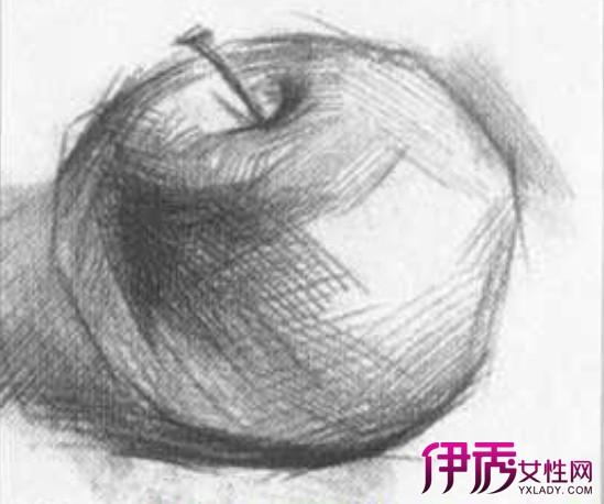 侧立苹果的明暗素描图文教程:苹果素描写生详细步骤(3图片