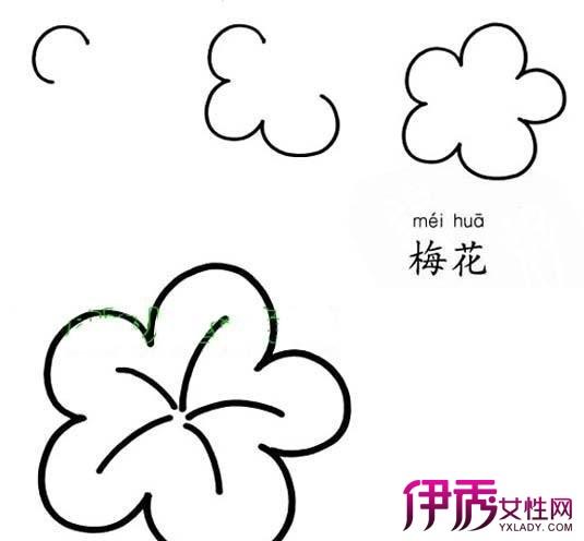彩铅手绘梅花简笔画怎么画 画梅花方法介绍