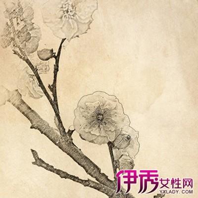 【素描梅花】【图】素描梅花图片大全