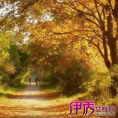 秋日私语钢琴谱|life.yxlady.com-伊秀生活小常识