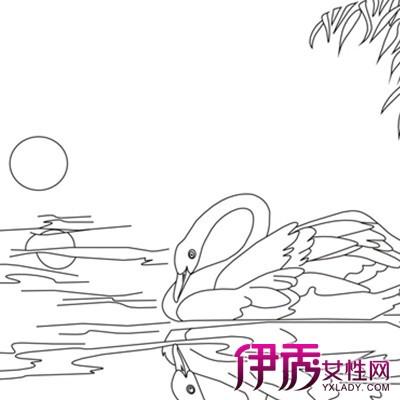 【图】天鹅图片简笔画图片大全 介绍简笔画的三大写生方法
