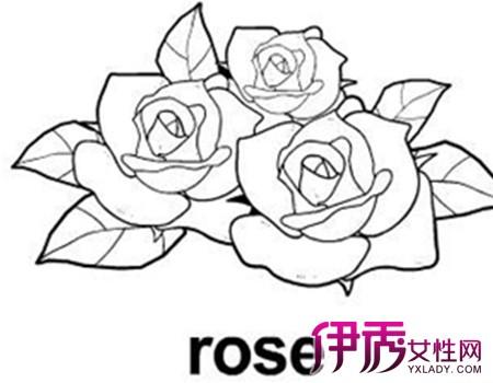 【图】画玫瑰花的简笔画图片 两个简单方法教你画出玫瑰花简笔画