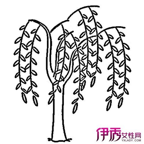 【图】简笔画图片大全植物展示 让你轻松学会简笔画