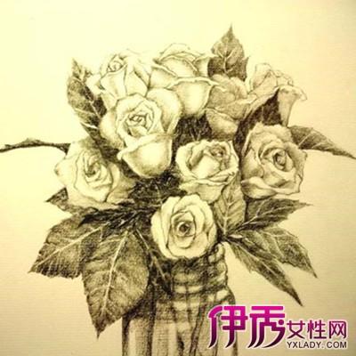 【图】欣赏玫瑰素描画 教你如何简单绘画漂亮的玫瑰