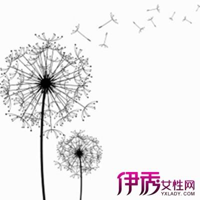 diy毕业相册简笔画素材