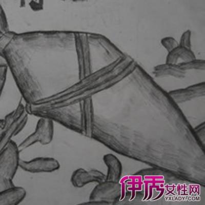 儿童萝卜素描画图片大全 向你介绍萝卜素描的技法和种类图片