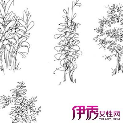 【图】景观小品手绘线稿图片观赏 为你介绍手绘的行业状况