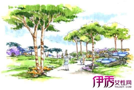 【图】手绘园林景观效果图展示