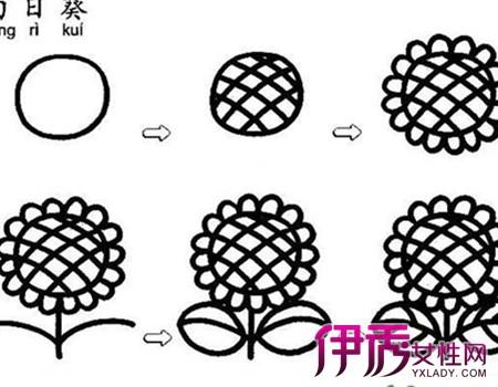【向日葵手绘】【图】向日葵手绘图片汇总