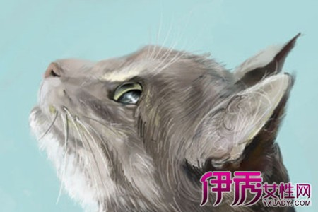 【图】动物手绘图片展示 3个方面告诉你如何画好一幅画