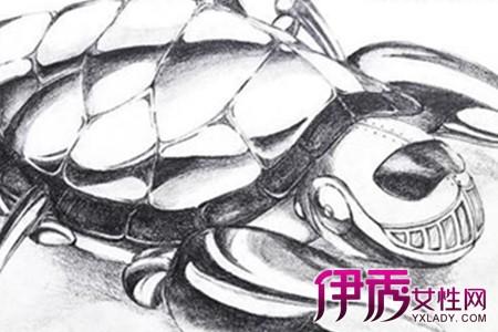 【动物手绘图】【图】动物手绘图片展示