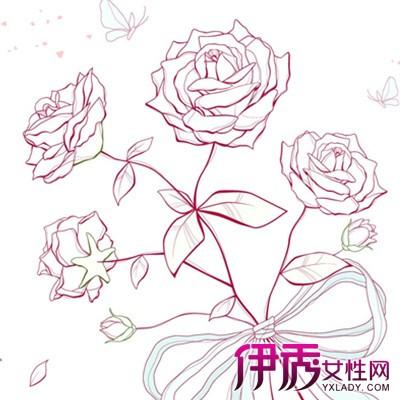 【图】手绘玫瑰花图片欣赏大全 带你走进艺术世界