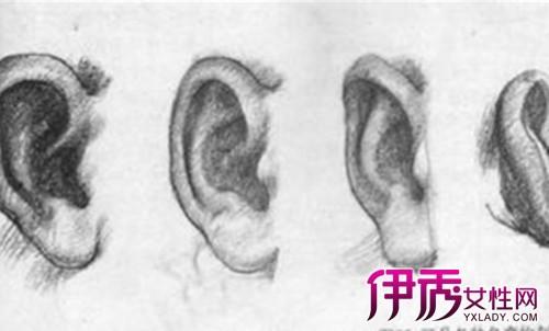 耳朵素描图片欣赏 手把手教你轻松画耳朵