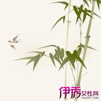 【手绘竹子】【图】手绘竹子图片欣赏