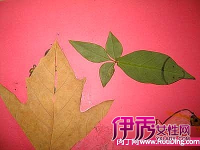树叶拼贴画-儿童手工制作创意图片