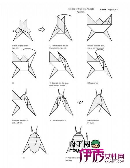 甲虫的折纸方法图解 甲虫身体外是一层硬壳,属于鞘翅目.